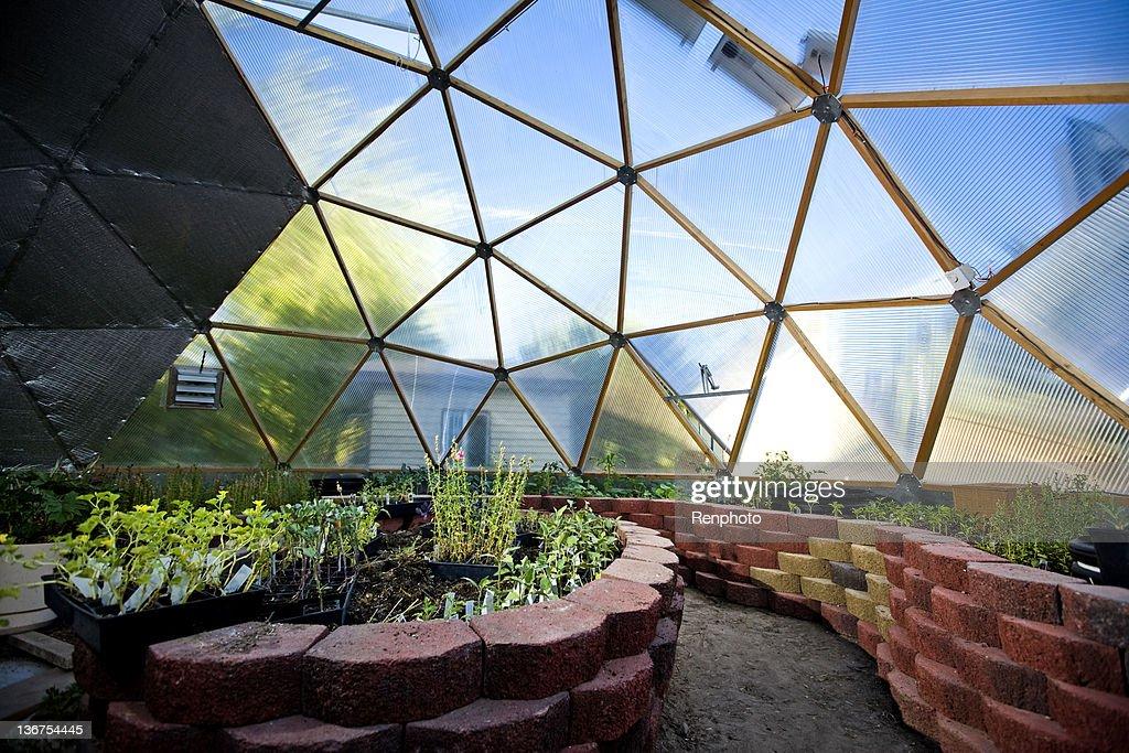 Interior da bela estufa Dome : Foto de stock