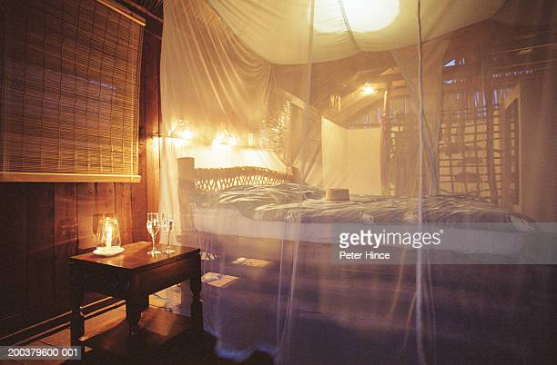 Interior of room, mosquito net covering bed (soft focus)