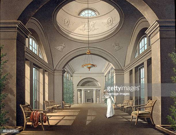 'Interior of the Aviary in the Pavlovsk Palace' mid 19th century The Pavlovsk Palace was designed in the 1780s by Charles Cameron a Scottish...