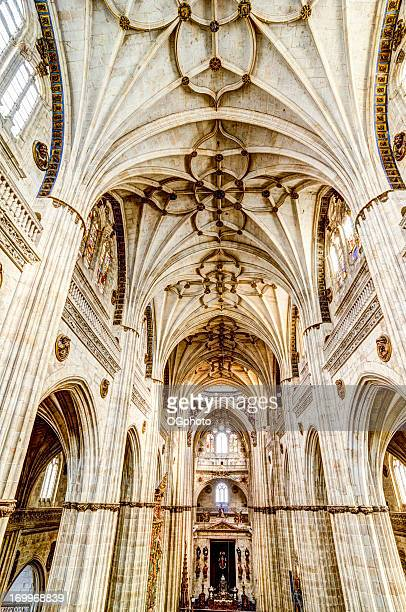 interior of the new salamanca cathedral, spain - ogphoto stock photos and pictures