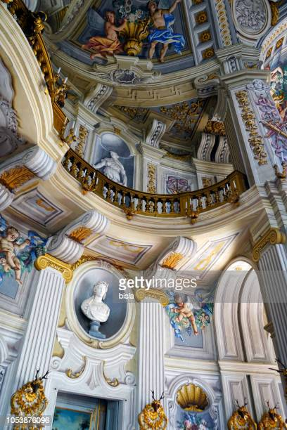 interior of the stupinigi hunting residence - turin - stupinigi stock photos and pictures