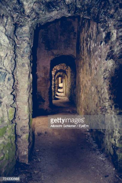 interior of tunnel - albrecht schlotter stock photos and pictures