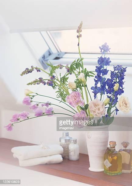 interior - delphinium stock pictures, royalty-free photos & images