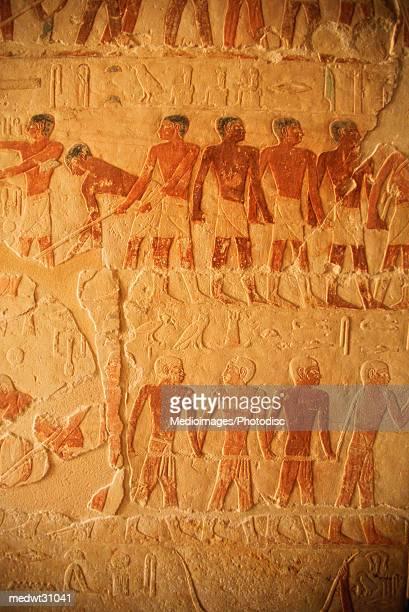 interior relief hieroglyphic painting in a mastaba, sakkara, egypt - nationaal monument beroemde plaats stockfoto's en -beelden