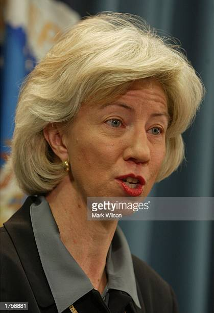 Interior Secretary Gale Norton talks about the 2004 budget during a news conference at the Department of Agriculture February 3, 2003 in Washington...