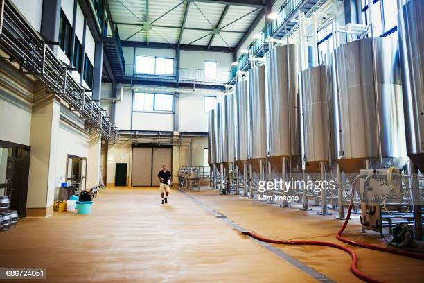 interior view of a brewery with a row of metal beer tanks. - brewers stock pictures, royalty-free photos & images