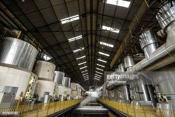 interior view of sugar cane beeing processed at Unidade industrial Cruz Alta da Guarani SA ethanol sugar and energy about 40 km from Sao Jose do Rio...
