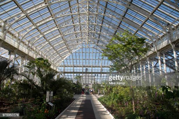 Interior view of the newly refurbished Temperate House at Kew Gardens in London United Kingdom The Royal Botanic Gardens Kew usually referred to...