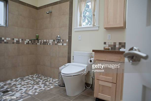 Interiors of a bathroom of an accessible home