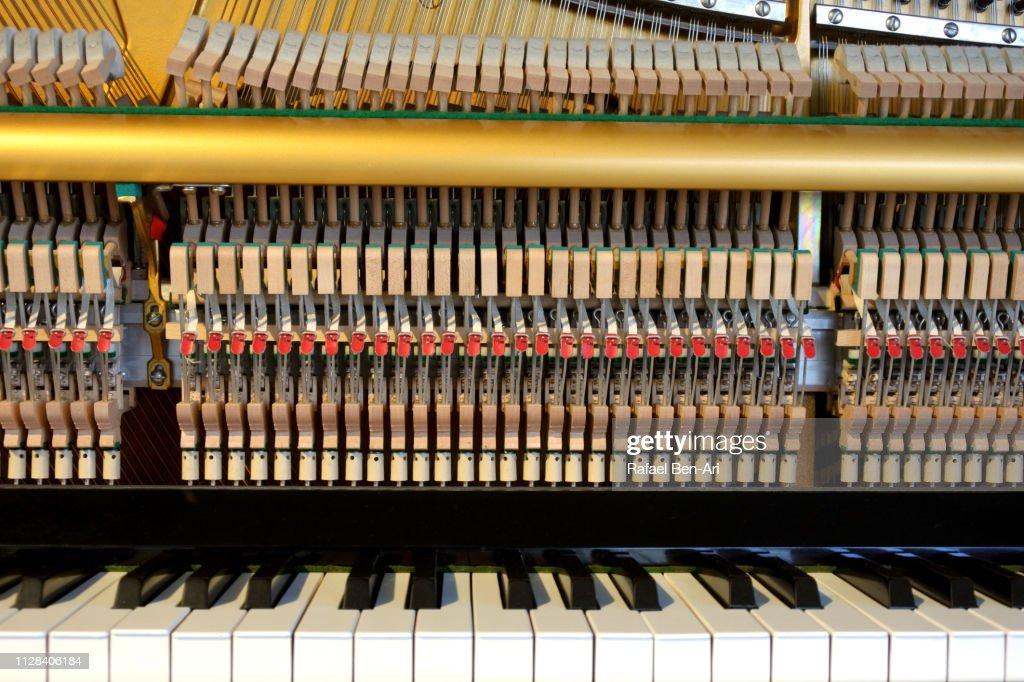 Internal Parts of a Piano : Stock Photo