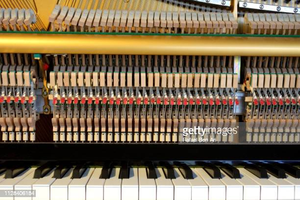 Internal Parts of a Piano