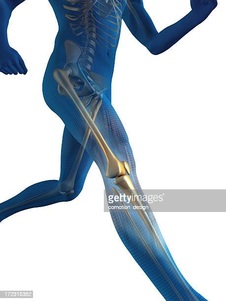 Internal view of man's bones while he runs