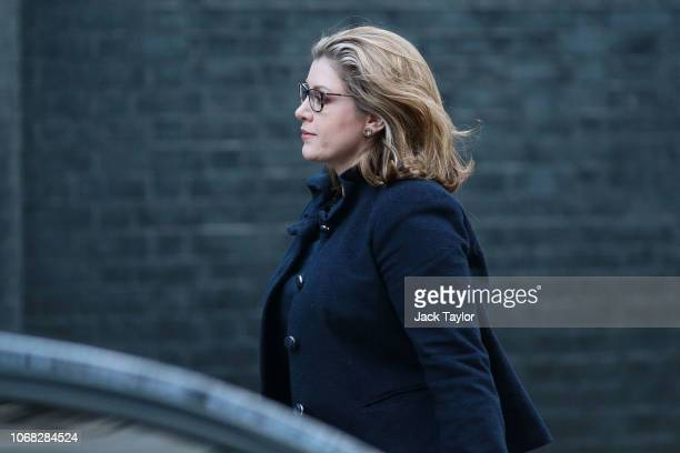 International Development Secretary Penny Mordaunt arrives at 10 Downing Street as Ministers attend a weekly cabinet meeting ahead of a meaningful...