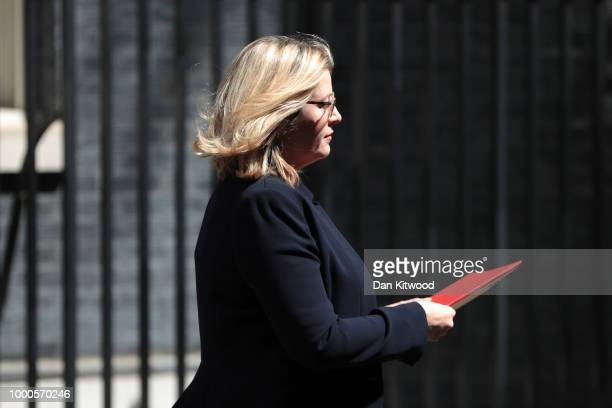 International Development Secretary Penny Mordaunt at Downing Street on July 17 2018 in London England MPs vote on the trade bill in Parliament today...