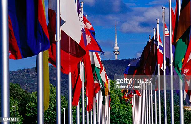 International Flag display at Commonwealth Place with Telstra Tower on Black Mountain in background.
