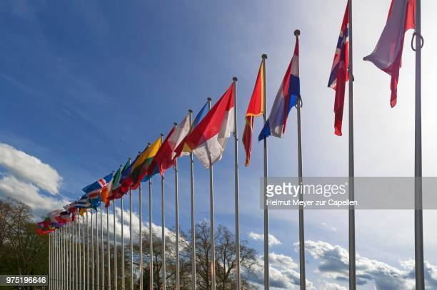 international flags in front of the building of the council of europe, strasbourg, alsace, france - council of europe stock pictures, royalty-free photos & images