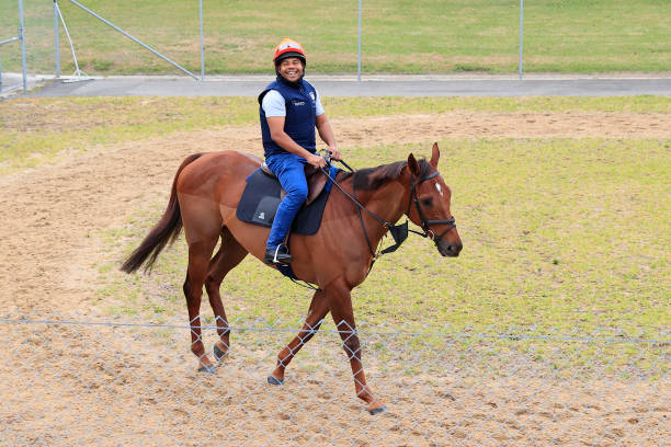 AUS: International Runners Arrive In Sydney For Spring Racing Carnival