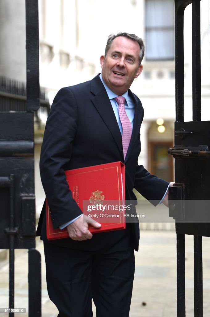 International Trade Secretary Liam Fox Arriving In Downing Street, London,  For A Political Cabinet