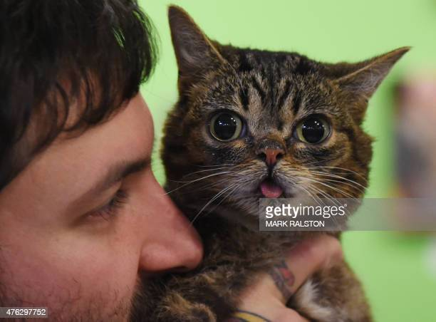 Internet celebrity cat Lil Bub known for her unique appearance is held by owner Mike Bridavsky at the inaugural CatConLa event in Los Angeles...