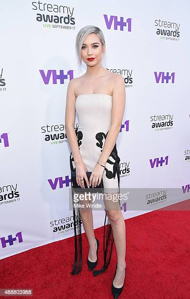 Internet personality Amanda Steele attends VH1's 5th Annual Streamy Awards at the Hollywood Palladium on Thursday September 17 2015 in Los Angeles...
