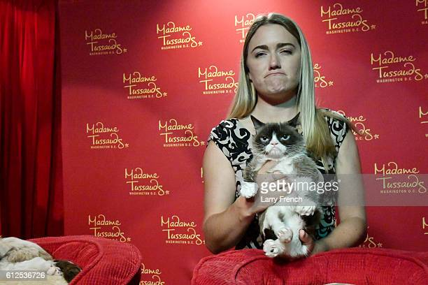Internet phenomenon Grumpy Cat brings her iconic No Face to Madame Tussauds Washington DC for a meetandgreet with fans at Madame Tussauds on...
