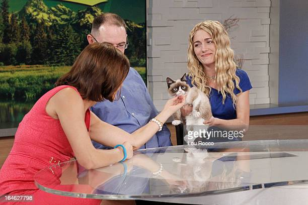 AMERICA Internet sensation Grumpy Cat appears on Good Morning America 3/22/13 airing on the Walt Disney Television via Getty Images Television...