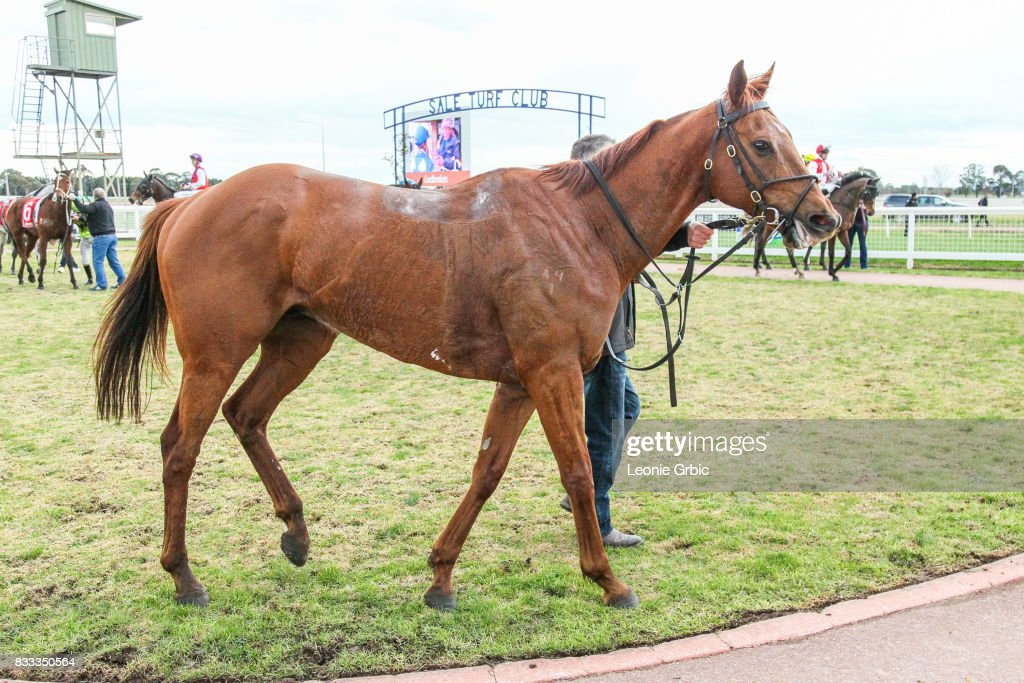 Internship after winning the ONeills Restaurant BM64 Handicap at Sale Racecourse on August 17, 2017 in Sale, Australia.