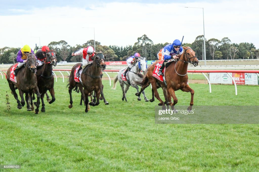 Internship ridden by Ben Allen wins the ONeills Restaurant BM64 Handicap at Sale Racecourse on August 17, 2017 in Sale, Australia.