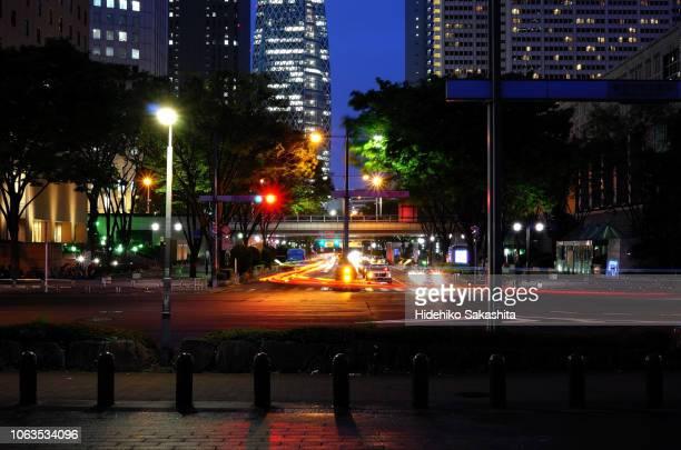 T Intersection in Shinjuku at night