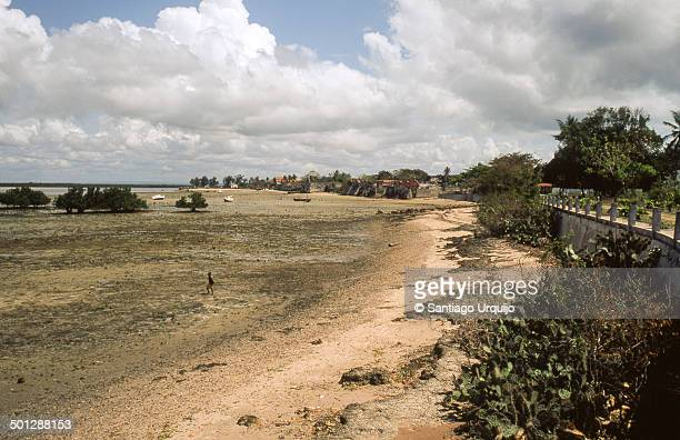intertidal zone and coast in island of ibo - igbo stock photos and pictures