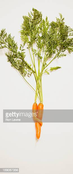 intertwined carrots on a white background