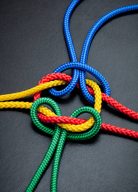 Intertwined Multicolored Ropes Wall Art