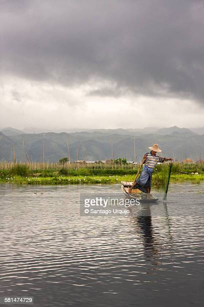 intha fisherman casting a fishing net in inle lake - dugout canoe stock photos and pictures