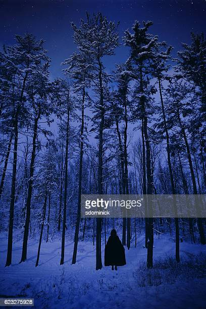into the cold dark winter forest - winter solstice stock photos and pictures