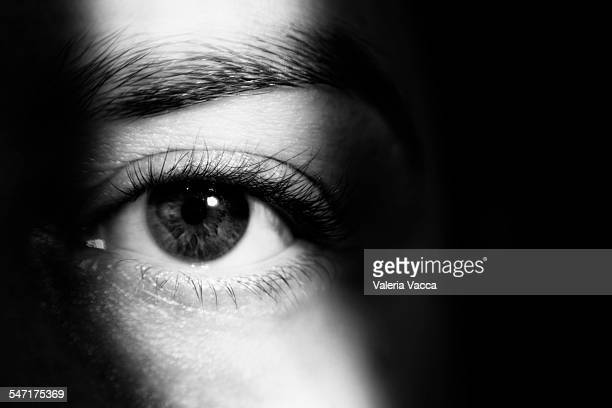 Into The Dark - Eye In the Shadows