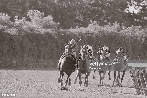 Into the final turn of the Belmont Stakes June 10th are Alydar Affirmed Noon Time Spender and Judge Advocate The fifth horse Darby Creek Road is...
