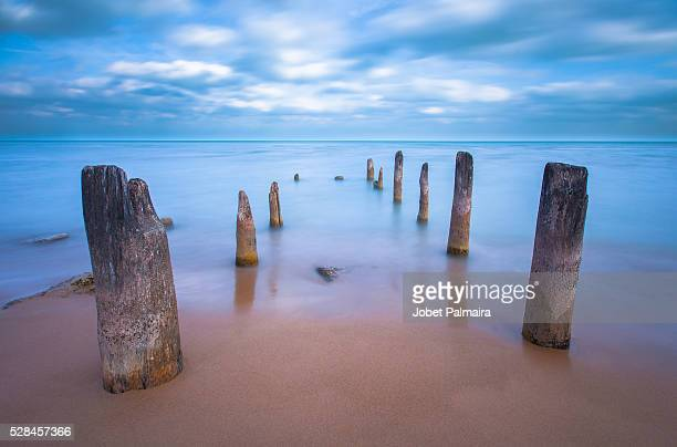 into the waters - evanston illinois stock photos and pictures