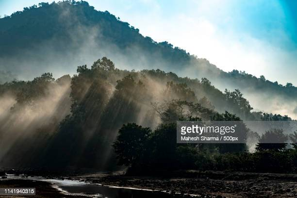 into the wild - uttarakhand stock pictures, royalty-free photos & images