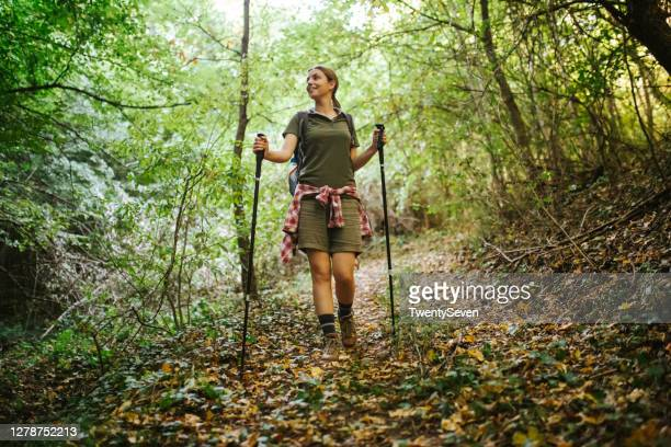 into the woods - hiking pole stock pictures, royalty-free photos & images