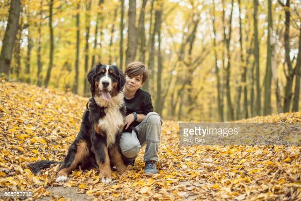 Into the woods, sweet young boy with his Bernese Mountain dog, Transylvania, Romania