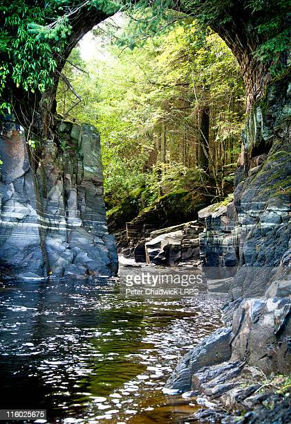 into_the_gorge - llandudno wales stock pictures, royalty-free photos & images
