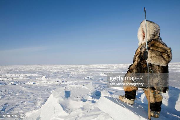 inuit hunter on the northpole - inuit stock pictures, royalty-free photos & images
