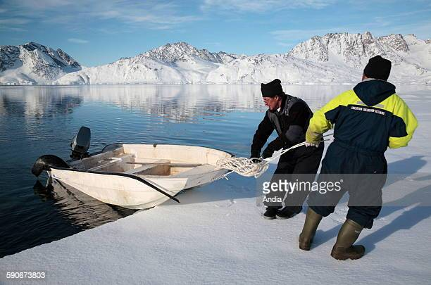 Inuit hunters back with a dead seal in a barge after a seal shooting near Tiniteqilaq in the district of Ammassalik in East Greenland