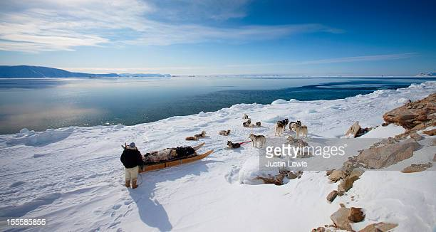 inuit man with his sled dogs looking at ocean - inuit stock pictures, royalty-free photos & images