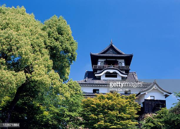 inuyama castle, inuyama, aichi, japan - aichi prefecture stock pictures, royalty-free photos & images