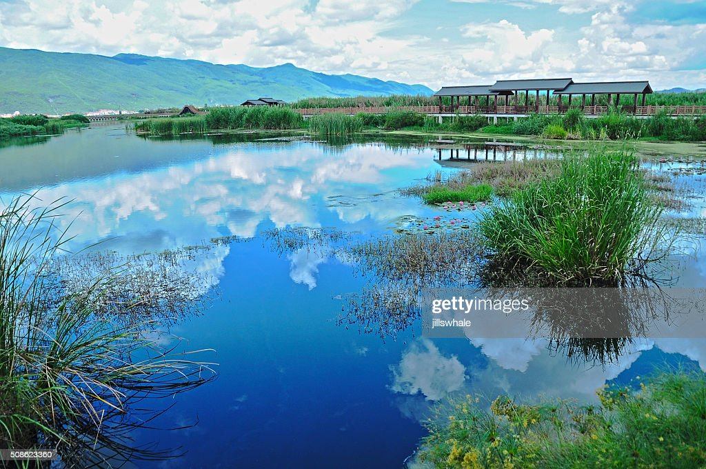 Inverted sky image in the grass lake : Stock Photo