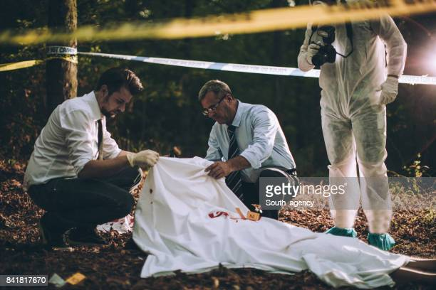 investigation in progress - murder stock pictures, royalty-free photos & images
