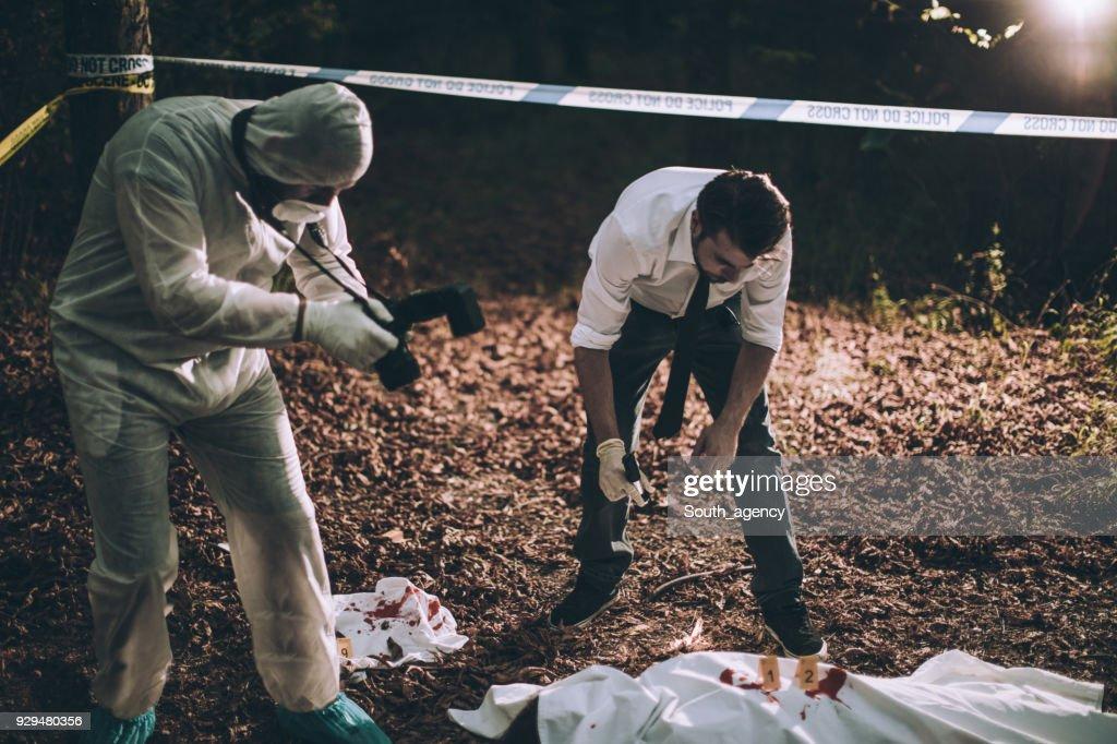 Investigación de un asesinato en el bosque : Foto de stock