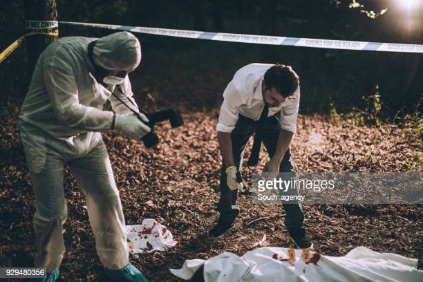investigation of a murder in forest - dead female bodies stock pictures, royalty-free photos & images