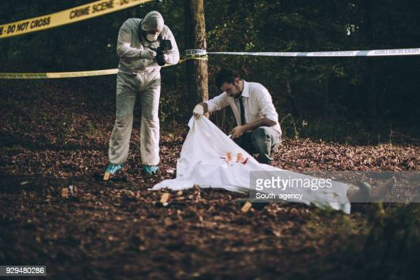 investigation of a murder - dead body stock pictures, royalty-free photos & images